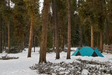 a small green tent in a snowy forest