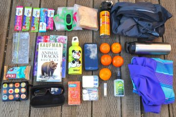 all the items in our family day pack
