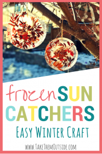 Frozen ice disks filled with twigs, berries, and leaves hanging from a tree