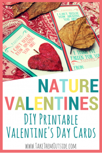 DIY Cards, Valentine's Day Nature Craft for kids to make   #naturecraft #leafcraft #valentinesday #valentinescraft