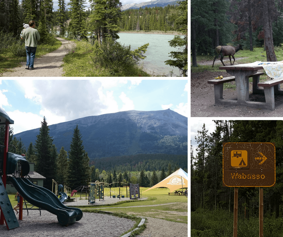 various images of campgrounds in Jasper National park - a path, a picnic table with elk nearby, a playground, and a camping roadsign