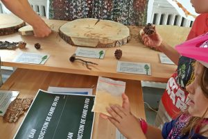 Hands-on Nature Learning in Jasper National Park