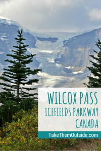 Your family hiking guide to Wilcox Pass in Jasper National Park, Canada | Family hikes in Jasper National Park | Travel guide to Jasper, Alberta, Canada | Icefields Parkway Canada| #Icefieldsparkway #Banff #Jasper #Glaciers