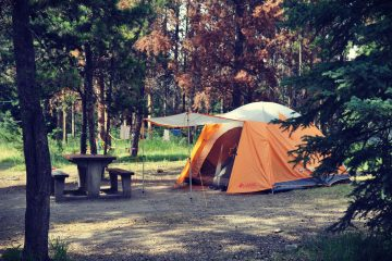 An orange tent in a wooded campsite