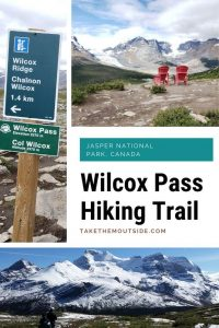 images of wilcox pass hiking trail