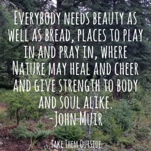 dark green forest and bushes. Text overlay is a quote by John Muir, Everybody needs beauty...