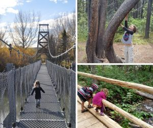 A collage of kids outdoors, crossing a bridge, investigating a creek, and reaching up a tree
