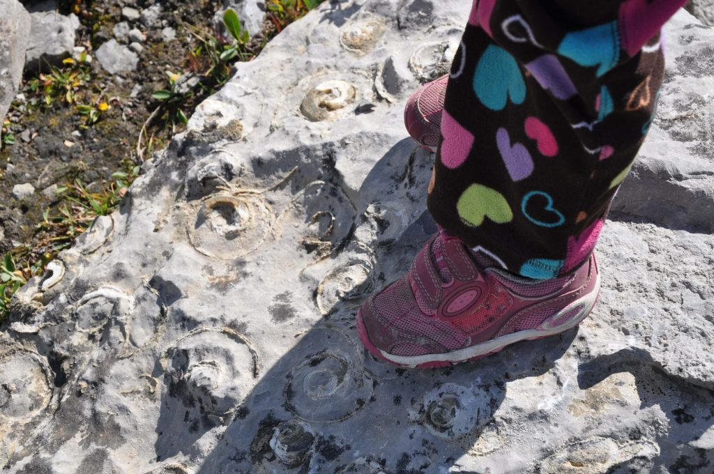 toddler's feet standing on a rock covered in fossils