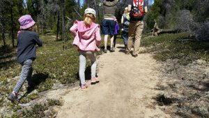 A group of families hiking on a wooded path