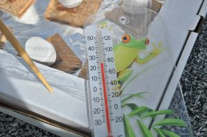 smores cooking in a solar oven with a frog thermometer reading the outdoor temperature