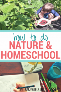 boy kneeling in the garden picking berries and kid's hand holding a pencil crayon and drawing at the table, text reads how do do nature and homeschool