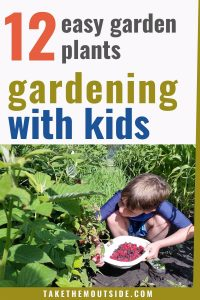 a boy kneeling in the raspberry bushes, text overlay reads gardening with kids, 12 easy garden plants