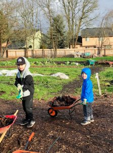 Two boys working in a community garden