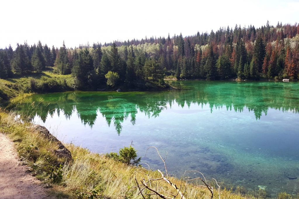 A turquoise lake bordered by trees and grasses