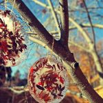 Wonderful Wintertime Frozen Sun Catcher Ice Ornaments