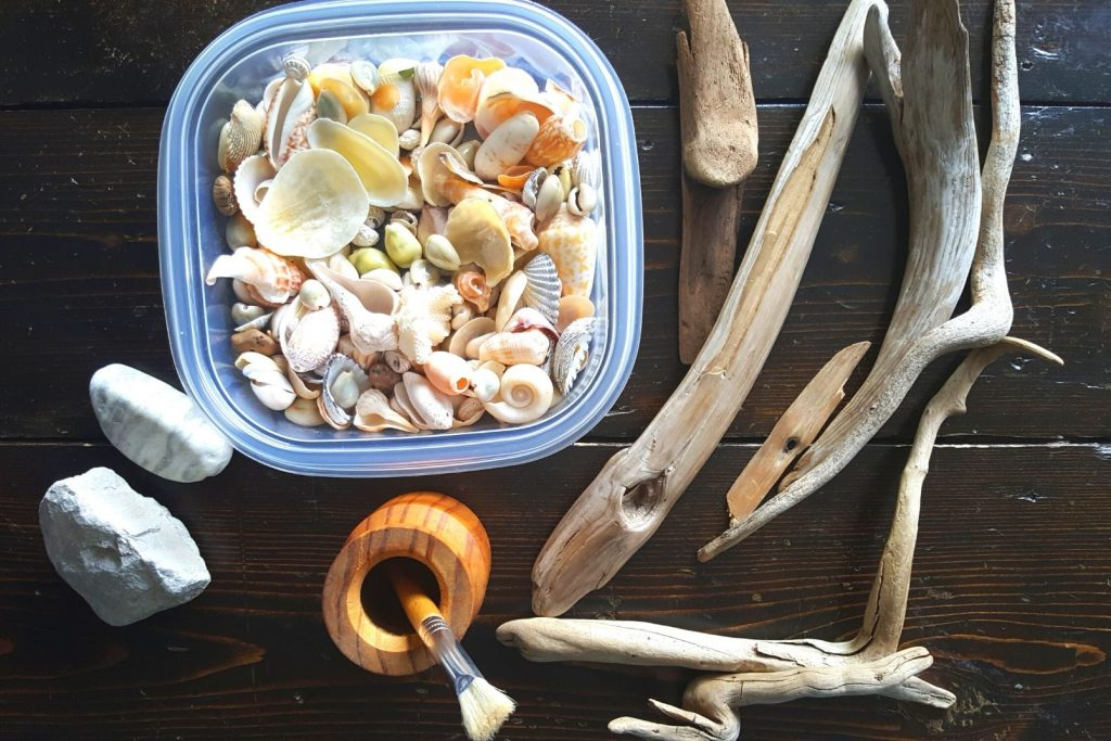 natural loose parts for play like sticks, shells, and rocks