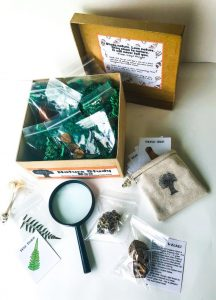 natural items, informative flash cards in the nature study gift box