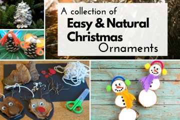 a collection of natural christmas tree ornaments to make and decorate with