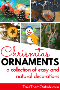 A collage of natural Christmas ornaments made form pine cones, bark, and oranges