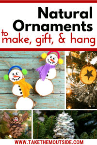 A collection of natural ornaments to hang on your chrismtas tree