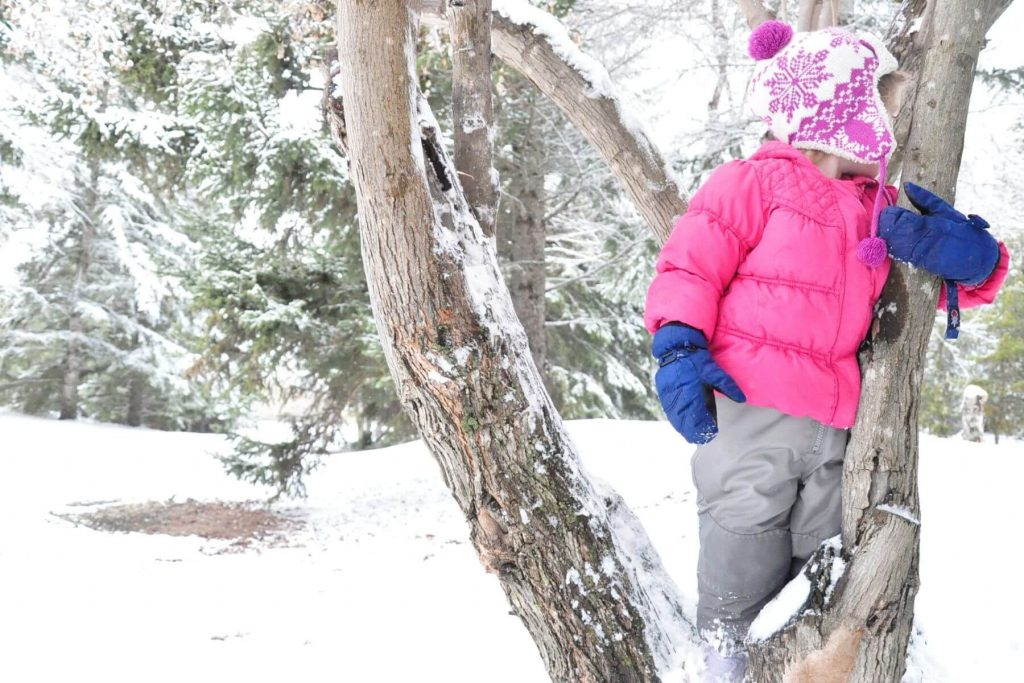 A young girl climbing a tree in the winter