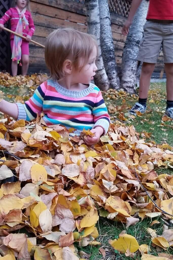 A toddler playing in the autumn leaves while other kids rake the leaves in the background