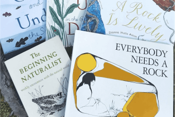 a few nature books in a pile outdoors on a wooden stump