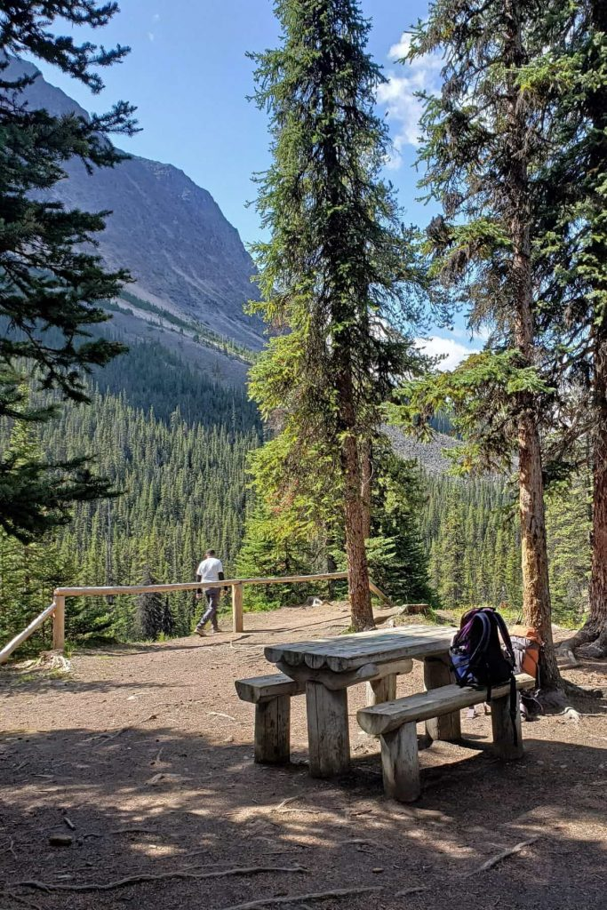 A picnic table at the Astoria campground in Jasper