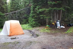 A wet tent and gear sitting to dry under the shelter of trees