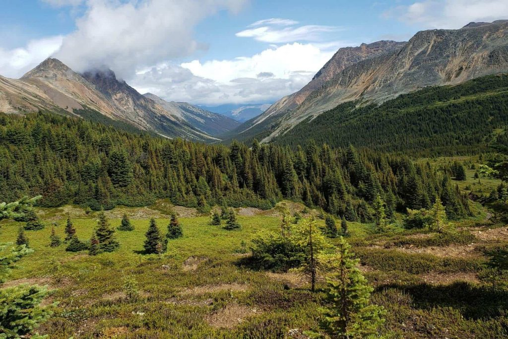The view down from Maccarib Pass into the Jasper Valley