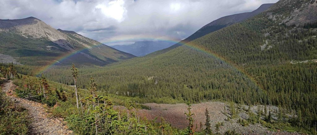 A rainbow crossing the Portal Creek Valley in Jasper National Park