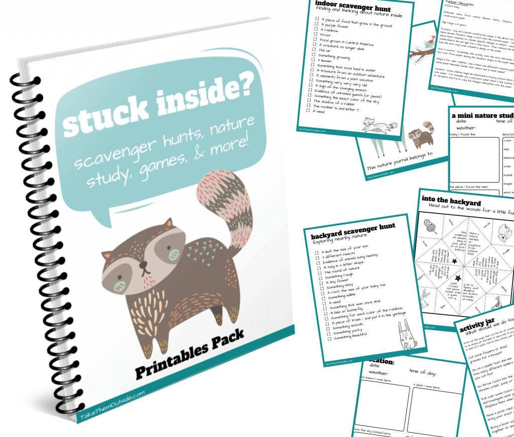 images on printable activities from the stuck inside nature activities package