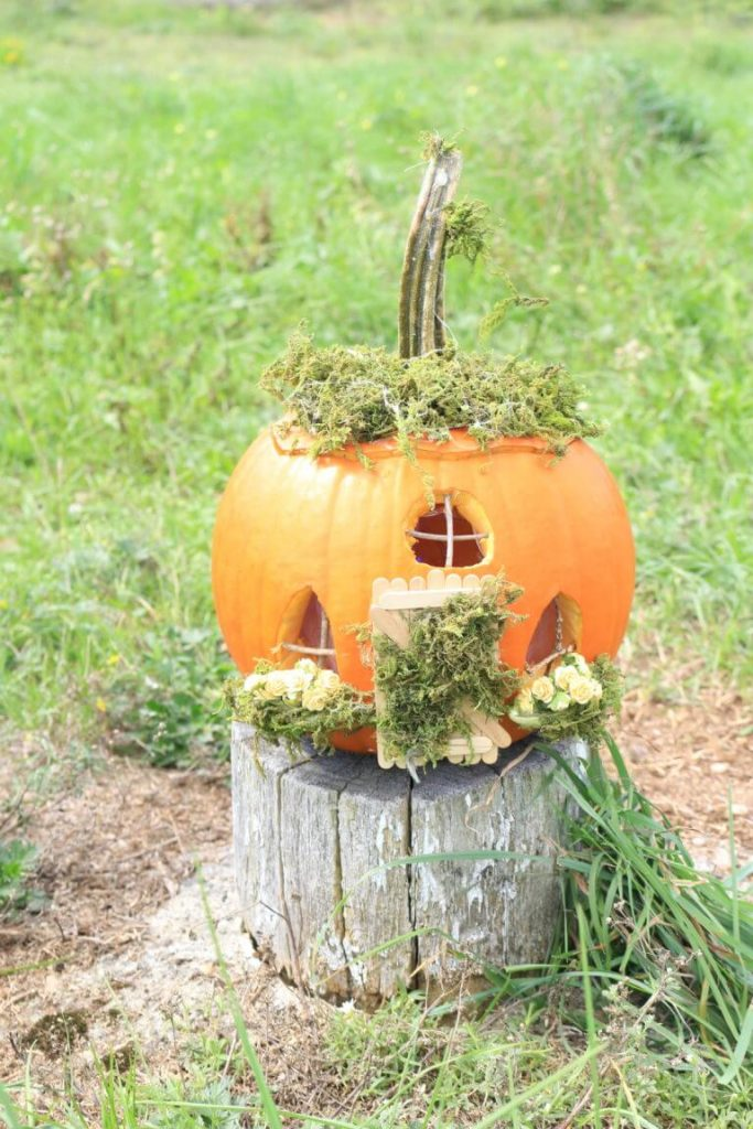 a small pumpkin carved and decorated with moss to be a fairy house